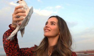 Star TV yayın akışı: Güvercin yeni bölüm ne zaman?