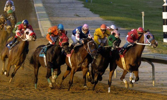 Ertelenen at yarışları için karar zamanı belli oldu