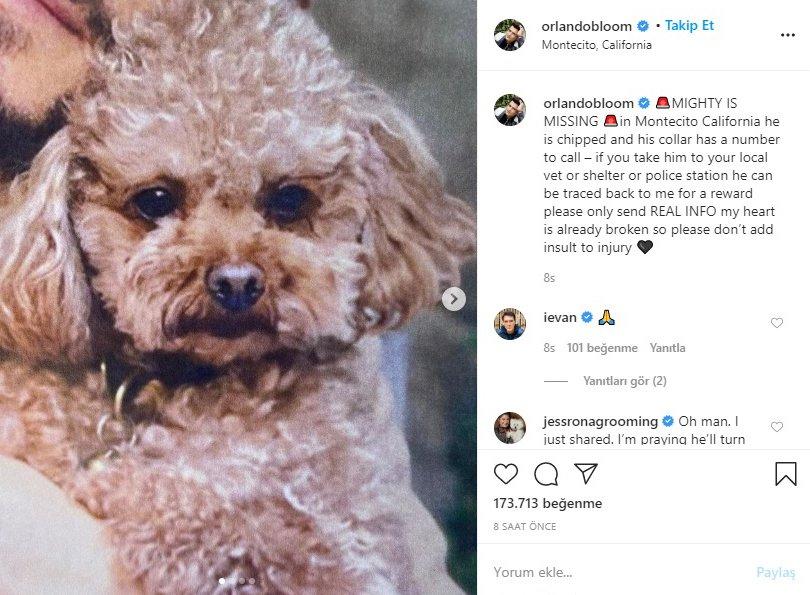 Orlando Bloom hayranlarına yalvardı: Onu bulmama yardım edin