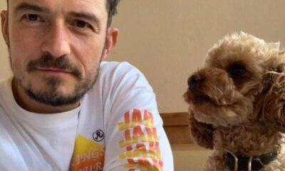 Orlando Bloom ve Katy Perry'nin kayıp köpeği hayatını kaybetti
