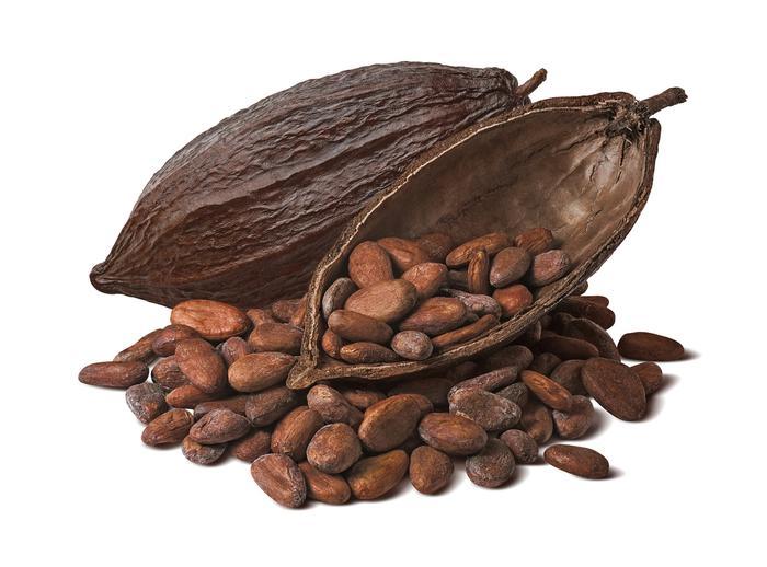 20- Kakao