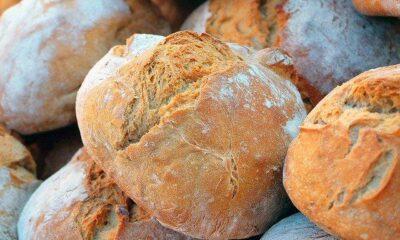 Fazla ekmek tüketmek bağışıklığı zayıflatabilir