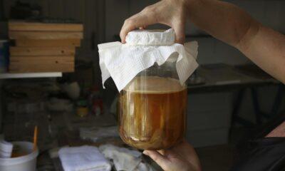 Kombu çayı nedir, nasıl yapılır? Kombu çayı nelere iyi gelir,…