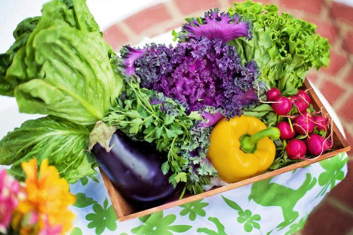 Sağlık için besinler şifasını kışa taşıyın
