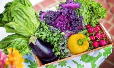 Ömrü uzatan, yaşamı güzelleştiren 7 besin
