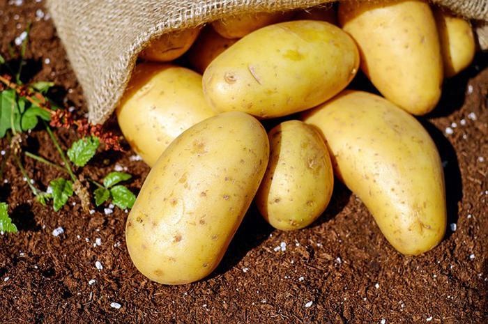 Patatesin bir faydası daha ortaya çıktı! Boyun ağrısına iyi geliyor