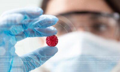 Virüsler hakkında ne kadar bilgi sahibiyiz? İşte kısa bilgiler