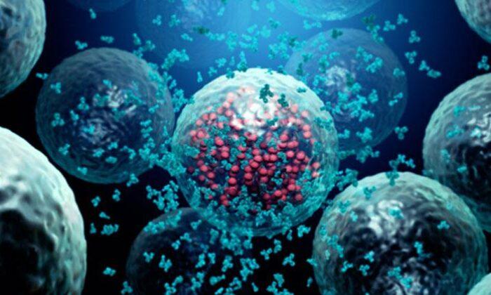 Bağışıklık sistemini güçlendirecek 10 etkili formül