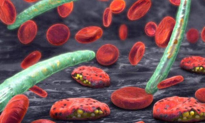 Koronavirüsün yeni bir mutasyonu daha ortaya çıktı