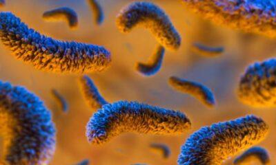Vücuttaki gizli tehlike:Helikobakter pilori bakterisi